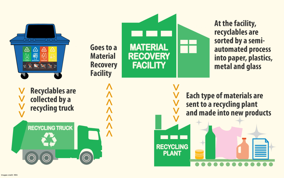 A guide to recycling in Singapore