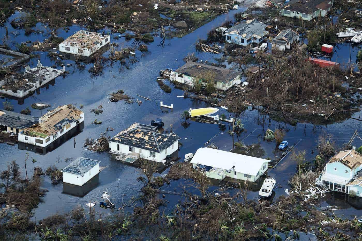 bahamas hurricane dorian green is the new black
