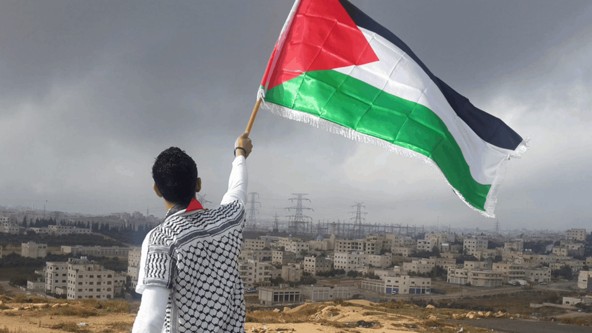 Palestine green is the new black