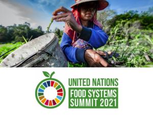 un food systems summit UNFSS