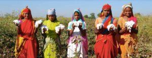 Cotton farming Garment Worker Diaries